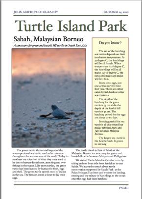 Turtle Island Park, Sabah, MalaysianBorneo