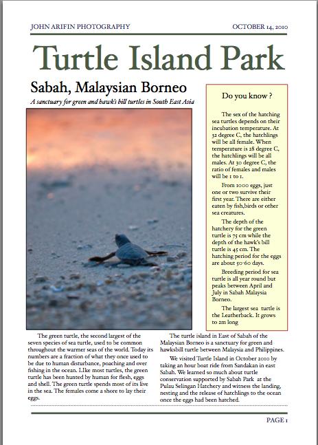 Turtle Island Sabah Borneo