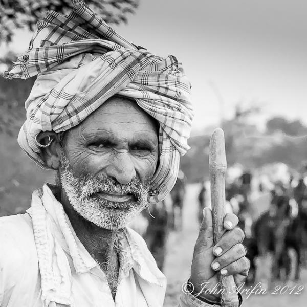 Bird watching and photographing wildlife in Little Rann Gujarat