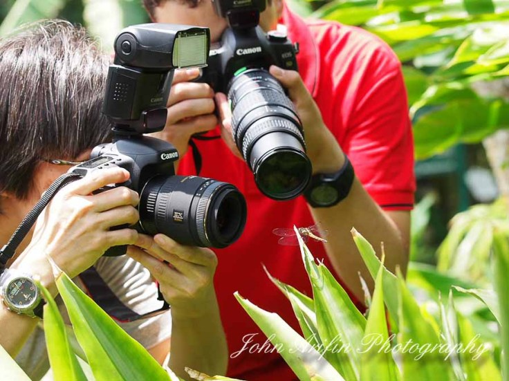 3 day macro photography workshop Singapore