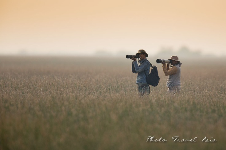 Birding and photographing Birds in Kuch Gujarat, India