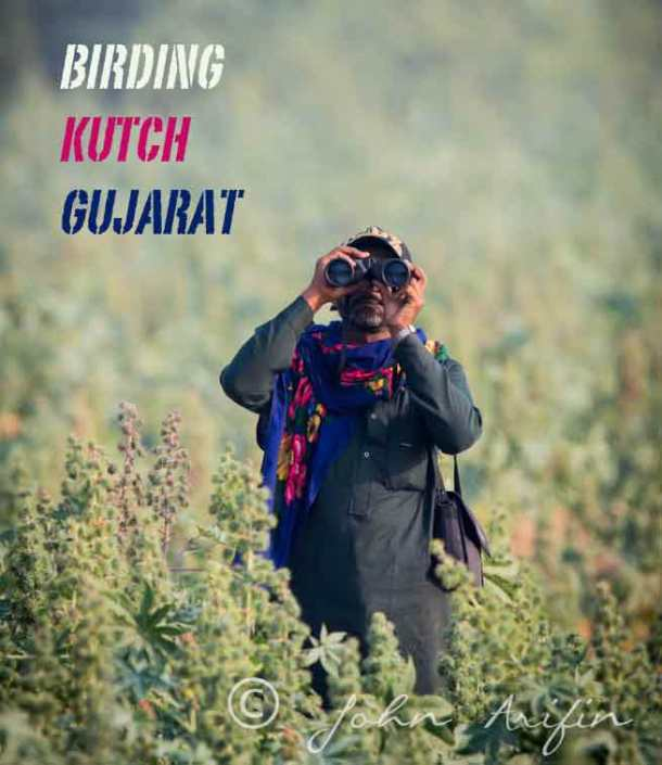 Mohamad, our bird watching guide in Kutch, Gujarat, India