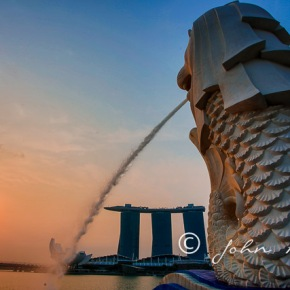 Photo Travel Asia|Early morning walk from the Singapore Merlion